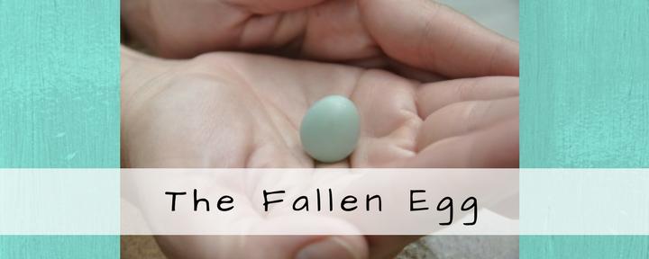 The Fallen Egg