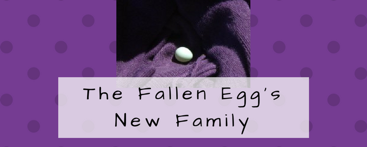 The Fallen Egg's New Family
