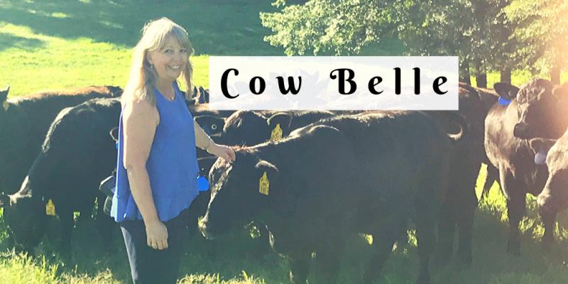 Cow Belle