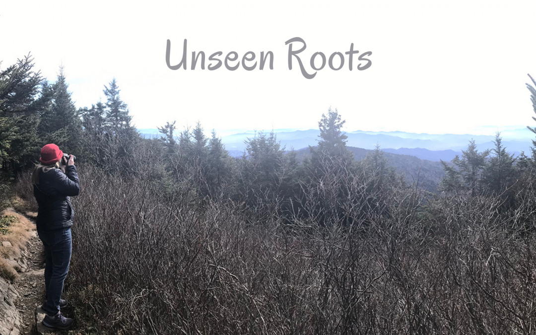 Unseen Roots